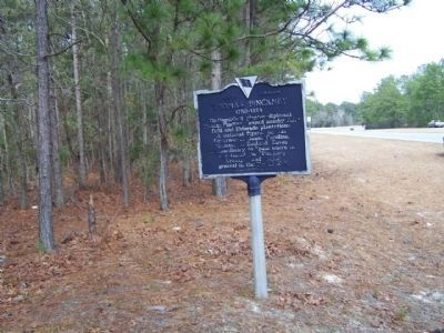Thomas Pinckney Marker, looking north along US17 image. Click for full size.