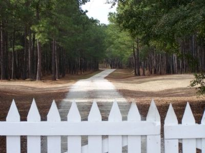 The Oaks Plantation Driveway - Oaks Plantation Dr image. Click for full size.
