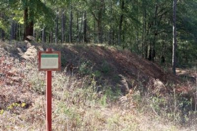 Camp Lawton earthworks as seen today image. Click for full size.