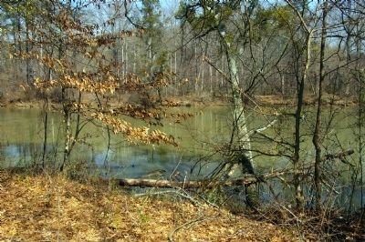 The Chattachoochee River at the Cochran Unit, Chattahoochee NRA image. Click for full size.