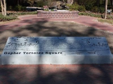 Gopher Tortoise Square Marker in Ridgeland,SC image. Click for full size.