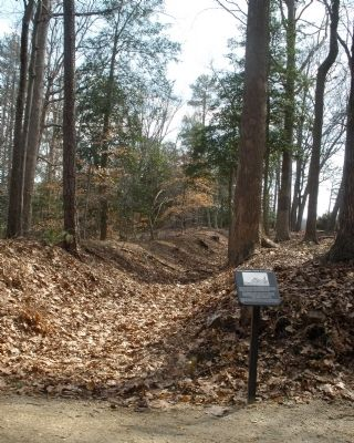 Cold Harbor Walking Trail image. Click for full size.