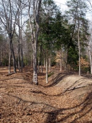 Confederate Breastworks image. Click for full size.