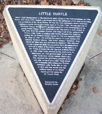 Little Turtle Marker image. Click for full size.