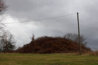 Dixon Mound (also known as the Williamson Mound) image. Click for full size.