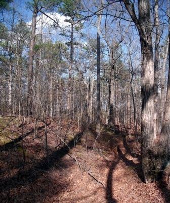 Earthworks of Battery Pegram (Battery 37). image. Click for full size.