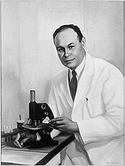 Dr. Charles Richard Drew image. Click for more information.