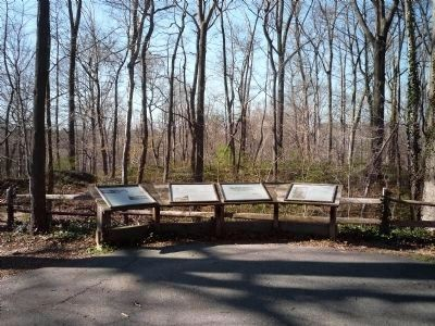 Interperative panels north of the maker - restored battery earthworks in the woods beyond image. Click for full size.