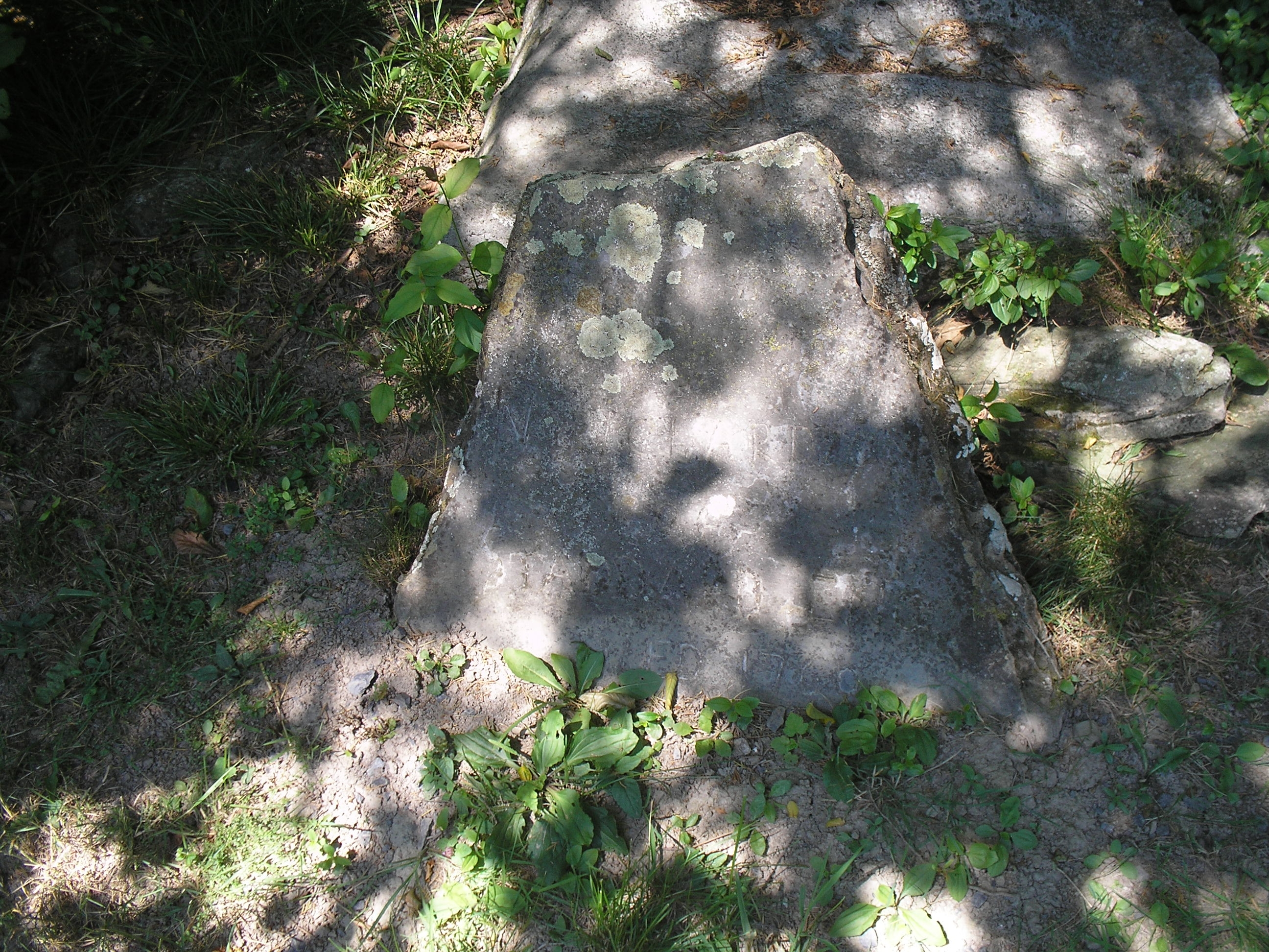 Gravestone of N. Richardson