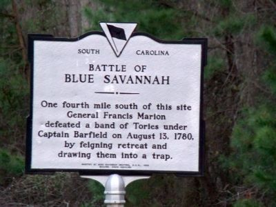Battle of Blue Savannah Marker image. Click for full size.