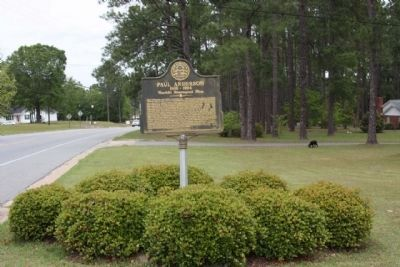 Paul Anderson Marker, looking north along McIntosh St (Ga 297) image. Click for full size.