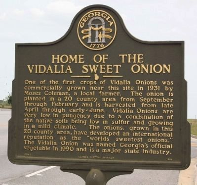 Home of the Vidalia Sweet Onion Marker image. Click for full size.
