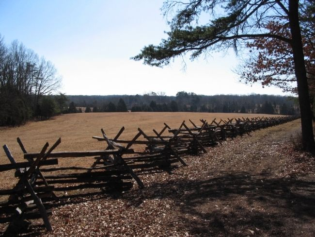 Restored Fence Line image. Click for full size.