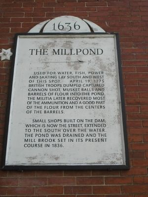 The Millpond Marker image. Click for full size.