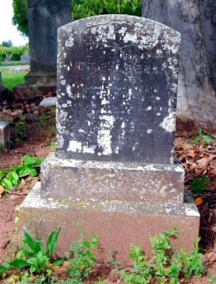 Kittie C. Perrin<br>Long Cane Cemetery, Abbeville, SC image. Click for full size.