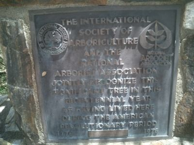 The International Society of Arboriculture and the National Arborist Association Marker image. Click for full size.