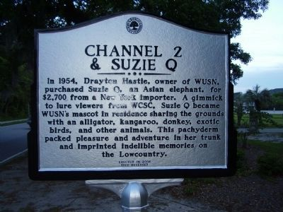 Channel 2 & Suzie Q Marker image. Click for full size.