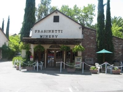 Frasinetti's Winery Tasting Room image. Click for full size.