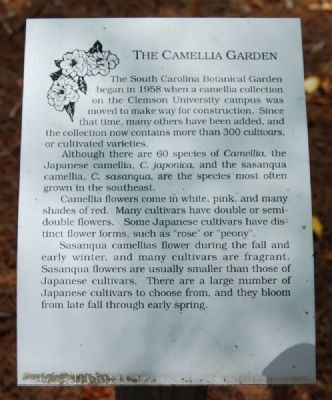The Camellia Garden Marker image. Click for full size.