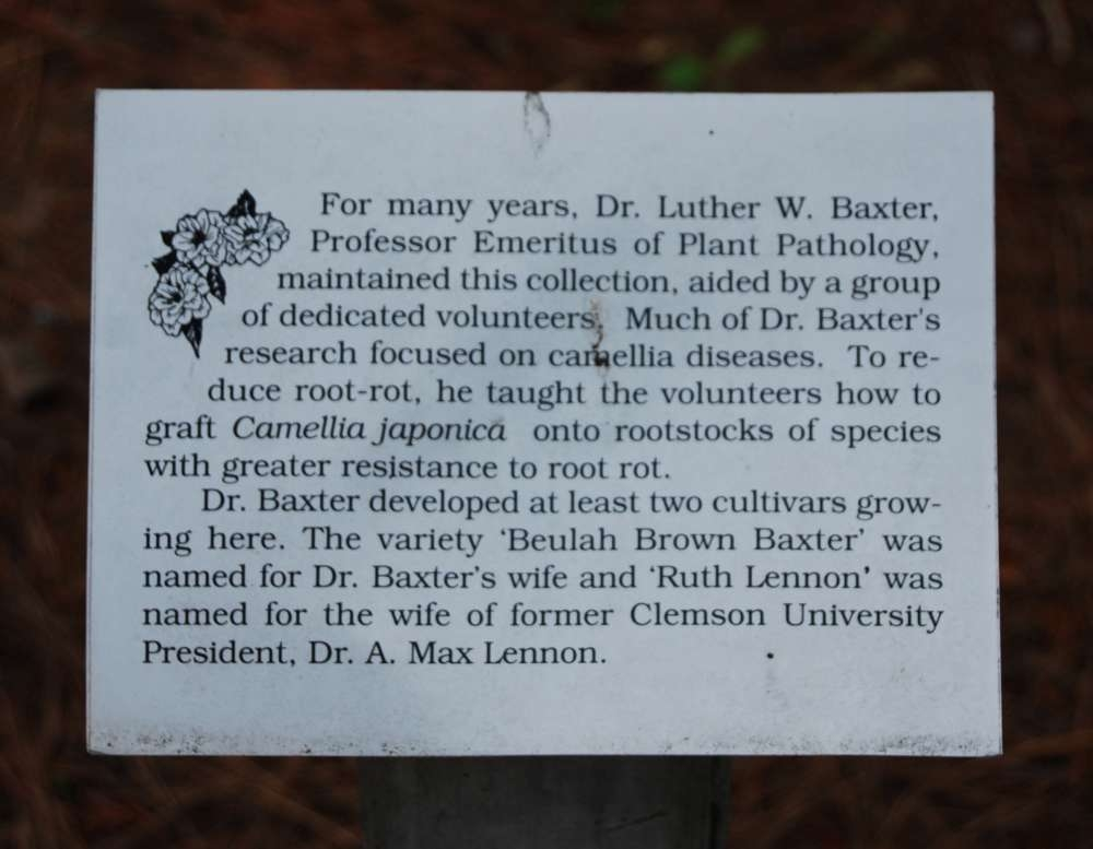 Dr. Luther W. Baxter Marker