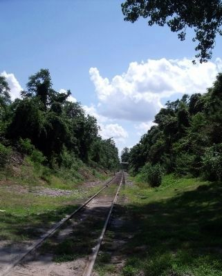 Railroad bed from City Point to Petersburg. image. Click for full size.