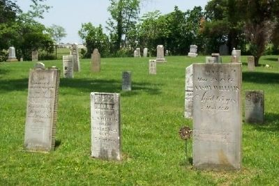 Williams Family Headstones in Williamsville Cemetery image. Click for full size.