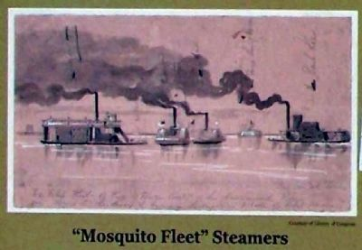 """Mosquito Fleet"" Steamers image. Click for full size."