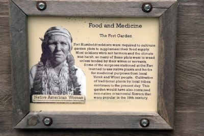 Food and Medicine - The Fort Garden image. Click for full size.