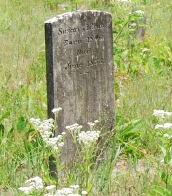 Tombstone for Susan Adams (1800-1853) image. Click for full size.