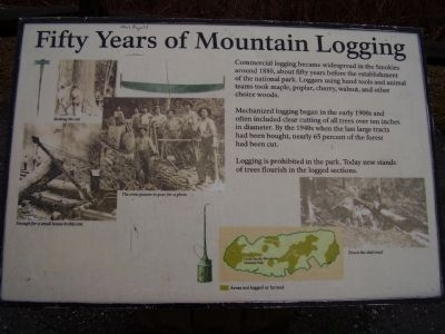 Fifty Years of Mountain Logging Marker image. Click for full size.