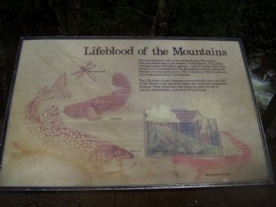 Lifeblood of the Mountains Marker image. Click for full size.