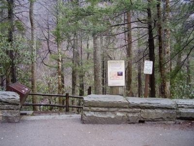 Chimney Tops Trail Marker image. Click for full size.
