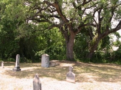 Marker (center by tree) in front of common grave image. Click for full size.