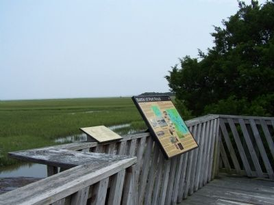 Battle of Port Royal Marker, at the end of the boardwalk at Belleau Wood Rd image. Click for full size.