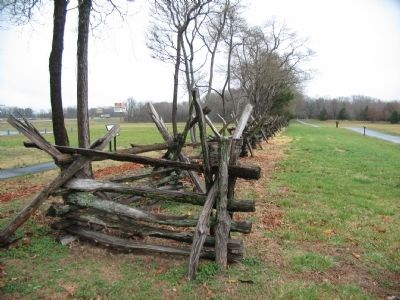 Reconstructed Split Rail Fence image. Click for full size.
