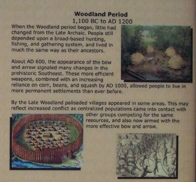Upper right side pictures; Woodland Period image. Click for full size.