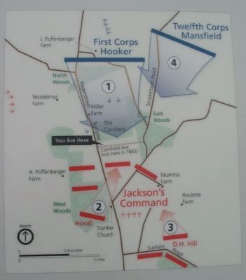 Map of the Action in the Cornfield image. Click for full size.