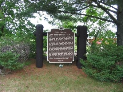 Chief Waupaca Marker image. Click for full size.