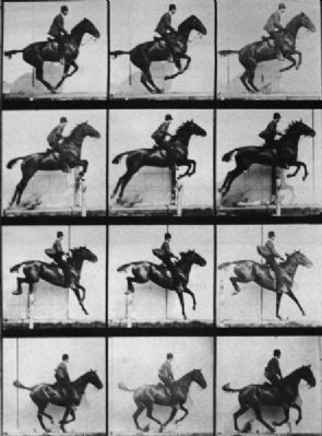 Sequence of a Horse Jumping image. Click for full size.