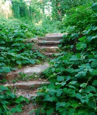 Steps Leading to the Campbell Mill Ruins image. Click for full size.