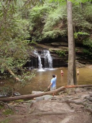 A swimming hole on the trail image. Click for full size.