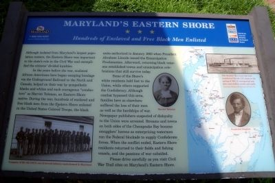 Maryland's Eastern Shore CWT Marker image. Click for full size.