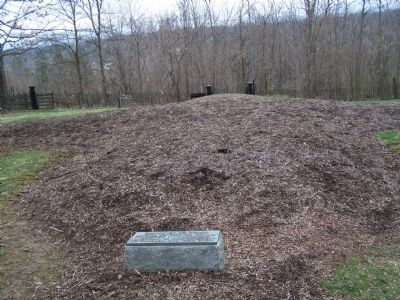 Mound of Mass Grave image. Click for full size.
