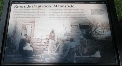 Riverside Plantation: Mannsfield Marker image. Click for full size.