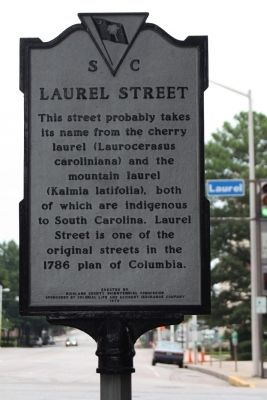 Laurel Street Marker image. Click for full size.