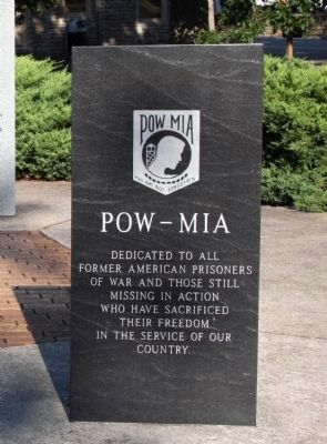 POW - MIA - You Are Not Forgotten . . . image. Click for full size.