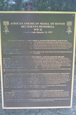 African American Medal of Honor Recipients Memorial, Marker Panel 10 image. Click for full size.