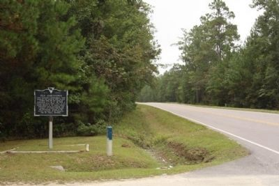 Old Jamestown Marker, looking south along SC 45 image. Click for full size.