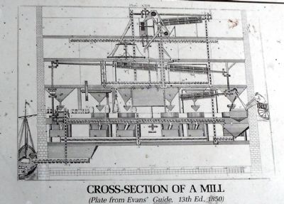 Cross-section of a mill image. Click for full size.