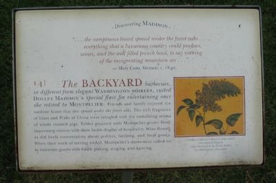 The Backyard Marker image. Click for full size.